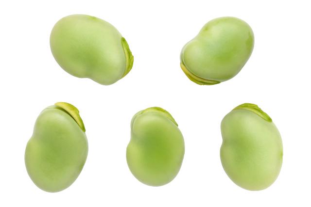 そら豆は色がキレイ!